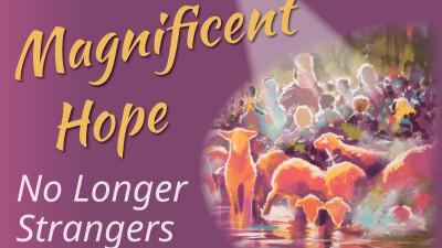 Magnificent Hope - Dec. 11